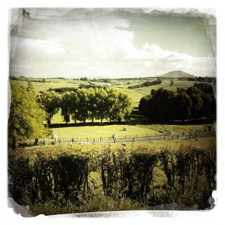 Rural landscape scene, New Zealand Stock Photo - 16801164