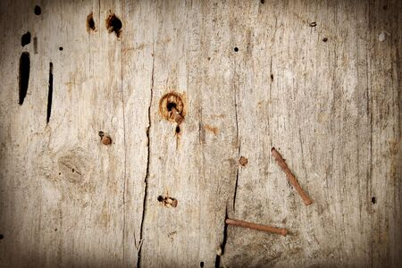 Rusty nails in old wooden wall Stock Photo - 17381309