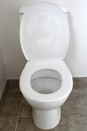 Closeup of toilet, lid open  Stock Photo - 20180855