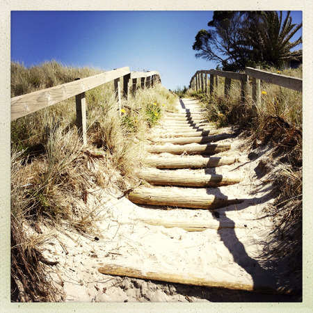 Walkway leading to the beach  photo