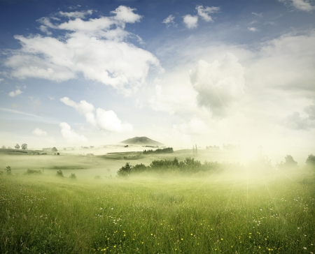 new horizons: Meadow in landscape, New Zealand Stock Photo