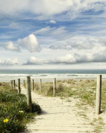 ビーチの風景につながる遊歩道