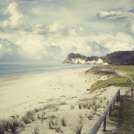 Beach and coastline, North Island, New Zealand photo