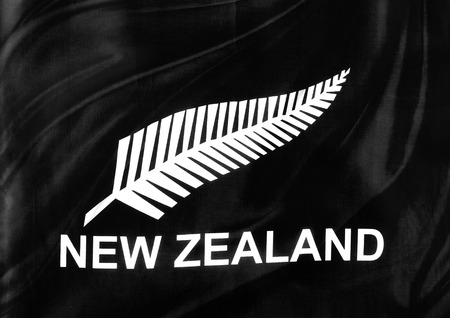 Closeup of silky New Zealand silver fern flag photo