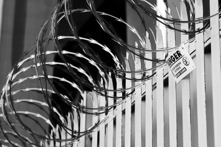 razor wire: Razor wire on top of fence