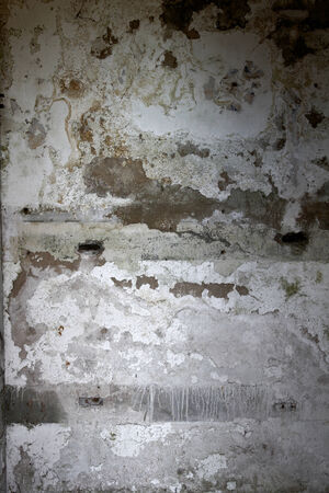 flaking: Closeup of flaking paint on wall