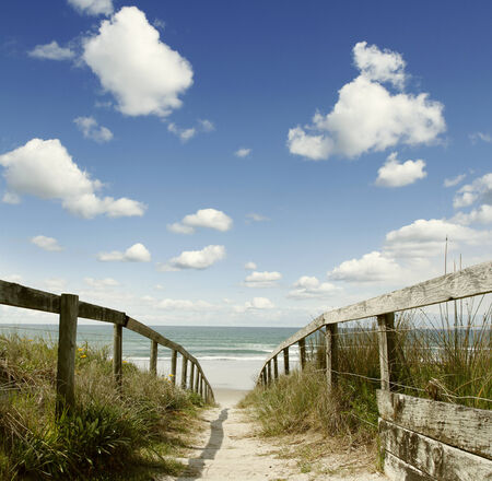 pathways: Pathway leading to the beach