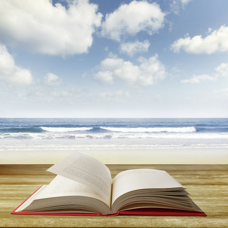day book: Open book on deck in front of beach scene