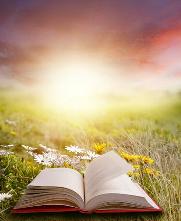 Open book in spring scene photo