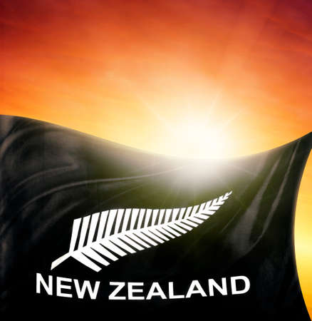 silver fern: New Zealand silver fern flag in front of bright sky
