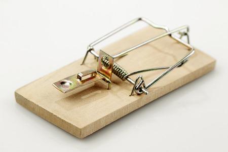 mouse trap: Mouse trap on plain background