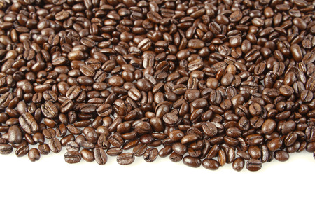 Closeup of coffee beans on plain background. Copy space photo