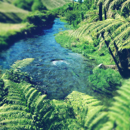 water stream: Pure clean spring water stream