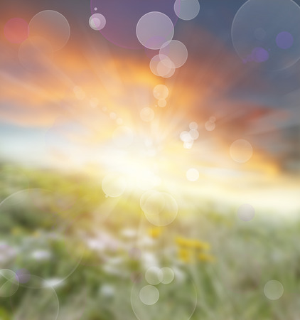 Abstract blurred summer background Stock Photo