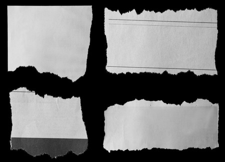 torn paper edge: Pieces of torn paper on black