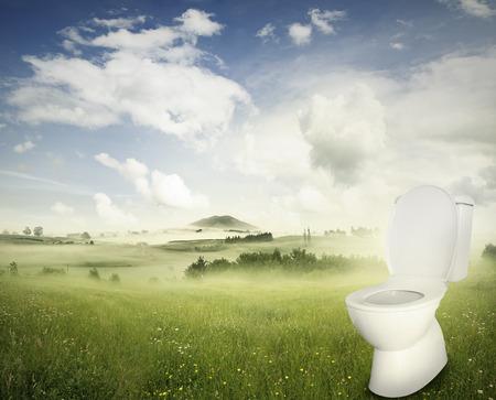 latrine: Toilet in spring field landscape