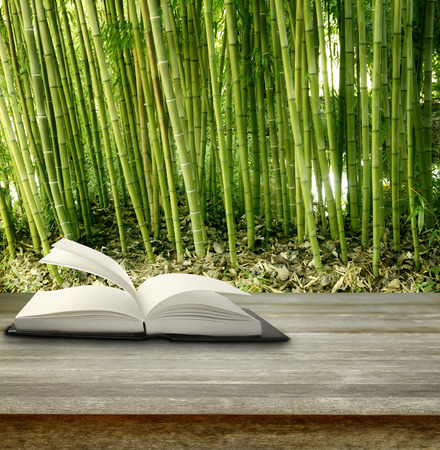 tropical garden: Open book on table in front of bamboo forest