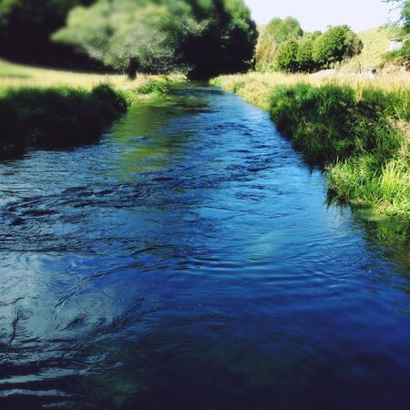 spring water: Pure clean spring water stream