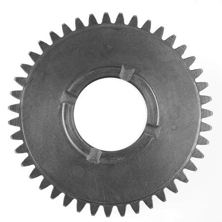 gear: Metal gear on plain background