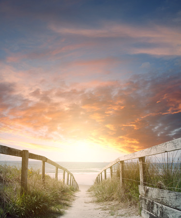 trails: Walkway leading to beach scene