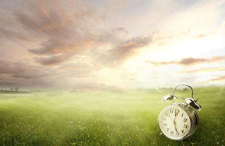 daylight: Alarm clock in sunlit spring field