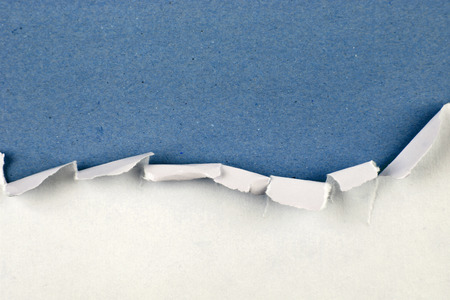 torn edge: Ripped paper on blue background