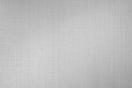tela blanca: Primer plano de blanco textura de papel