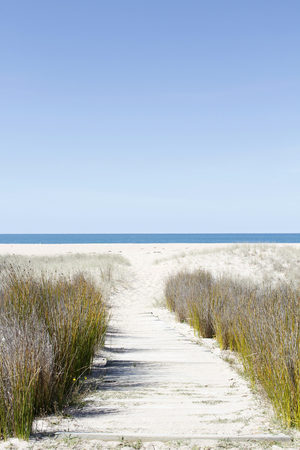 Pathway leading to the beach