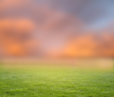Green meadow and blurred clouds sky Imagens