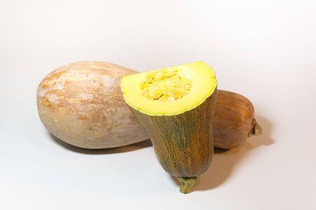 cucurbit: Cucurbit Pumpkin