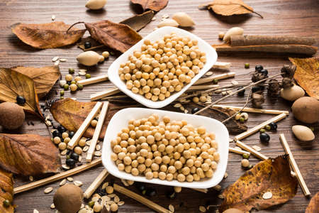 soybeans: Soybeans Stock Photo