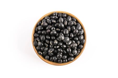검은 콩 스톡 콘텐츠