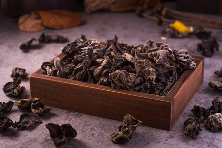 cloud ear fungus: black Fungus