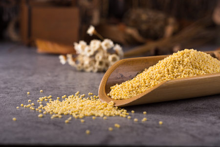 roughage: Millet Stock Photo