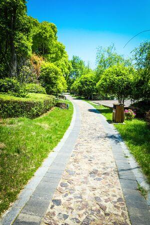 repose: Green city park