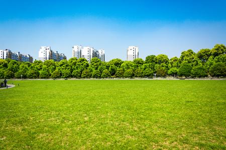 ville et herbe avec ciel bleu Banque d'images