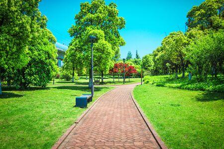 Beautiful city park