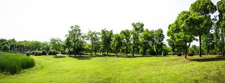 골프 필드에 푸른 잔디