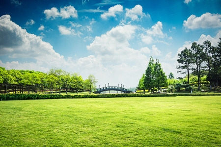 The beautiful park Stock Photo