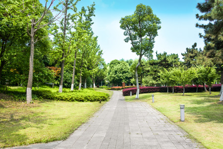 Bright sunny day in park. 免版税图像