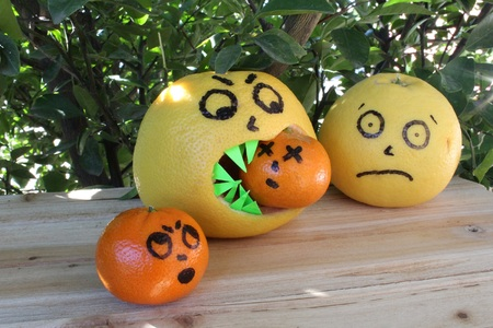 food photography: Funny Food Photography -  Zombie Grapefruit   eats brains !