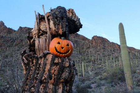 hallows: Hallows Eve in the Desert Southwest