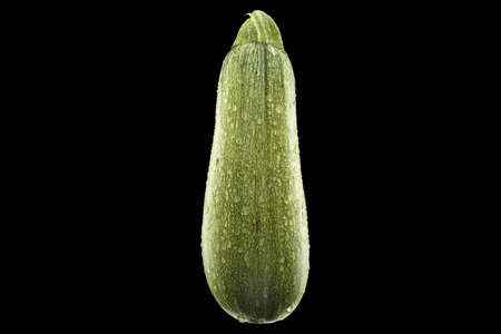 ripe wet  green zucchini isolated on black background Stock Photo - 16385603