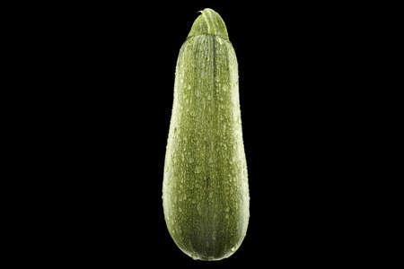 ripe wet  green zucchini isolated on black background Stock Photo - 16385603
