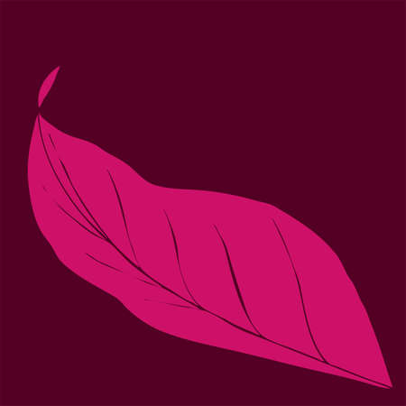 single pink tropic leaf on burgundy background