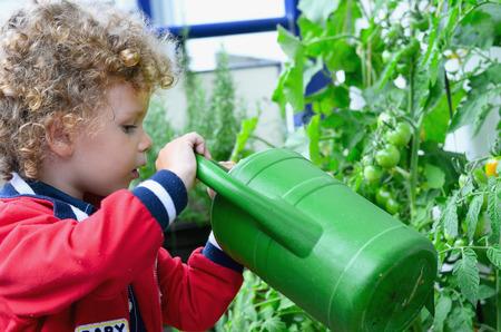 Little boy gardening on the balcony 版權商用圖片