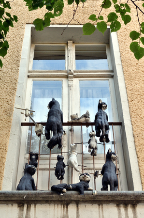 Window with cat decoration