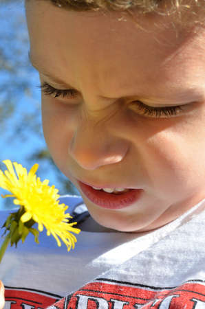 Child discovers nature and smells of a buttercup Stok Fotoğraf
