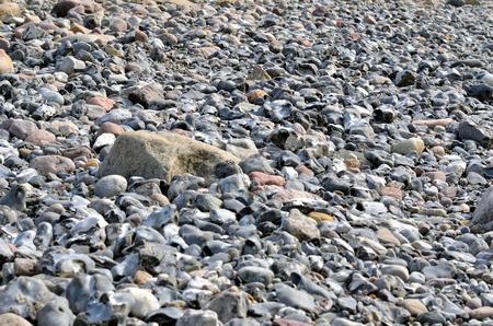 Scree on the Baltic Sea coast Rügen island Cape Arkona