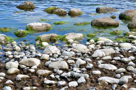 Coast of the island of Rügen Cape Arkona Stockfoto